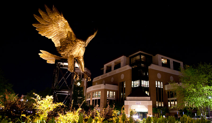 ULM Warhawk statue at night.