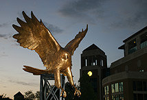 photo of warhawk statue