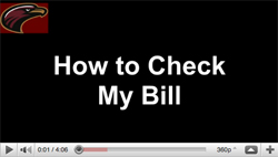 How to check my bill