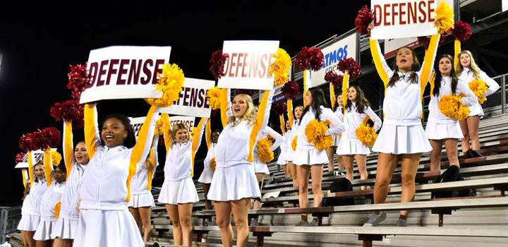 hawkline holding signs at football game