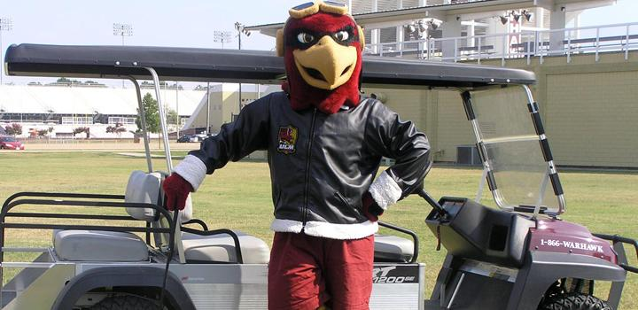 Ace the Warhawk!