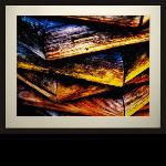 Title: Timber Ember