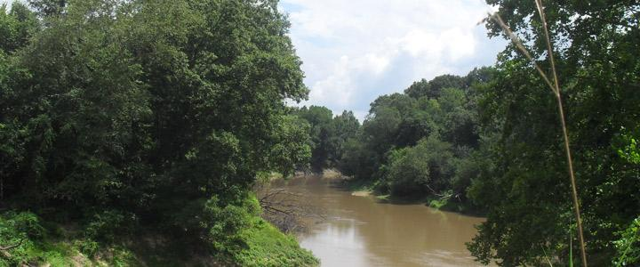 photo of bayou bartholomew