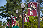 banners on light posts