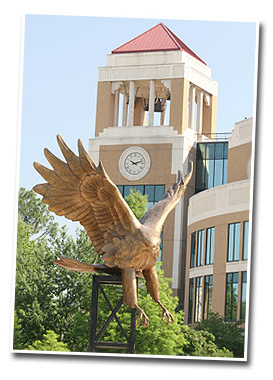 hawk statue with library bell tower in background