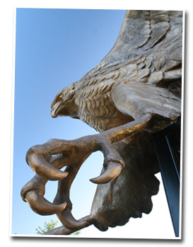 picture of warhawk statue
