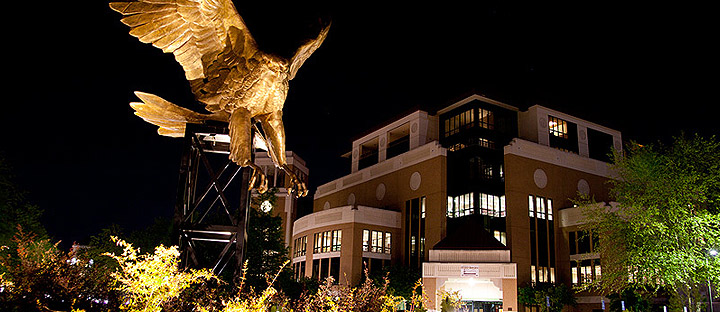 night photo of library and hawk statue