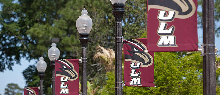 photo of light poles with ULM banners