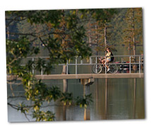 bicyclist on bridge over bayou